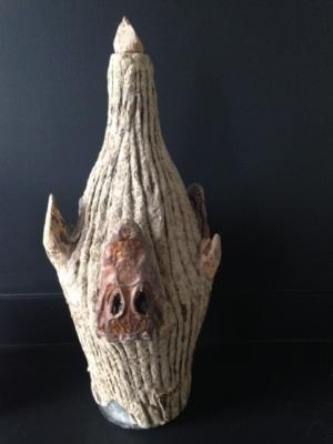 Krokodillen hoofd gevonden in Bonaire