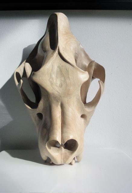 Skull hout uniek exemplaar Durban Zuid-Afrika H40 | B22